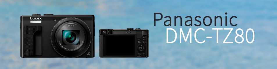 Cámara Panasonic DMC-TZ80